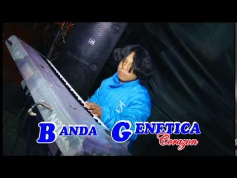 Banda Genética Maldita Cerveza 2014