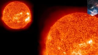 Evil twin: Our sun has a long-lost twin that may have wiped out the dinosaurs - TomoNews