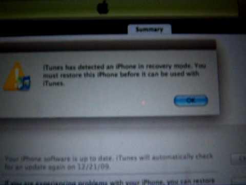 Iphone  White Screen Wont Turn On