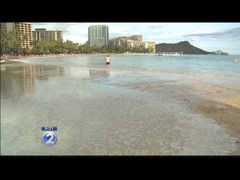 High tide floods beaches, roads on Oahu; what's behind the deluge of water