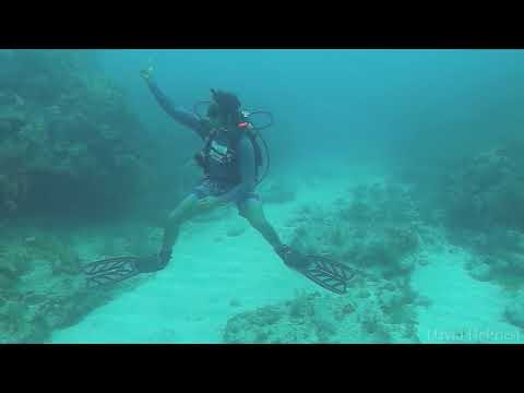 Molasses Reef - Hole In The Wall   Part 2   8-10-17