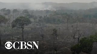 Climate change is a national security issue, experts warn