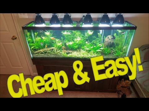 DIY Lighting For Your Planted Tank: Cheap And Easy!