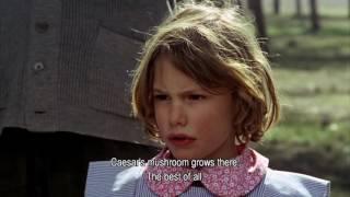 El Espíritu de la Colmena - Víctor Erice - (1973) Wrong Mushroom - Memorias del Cine