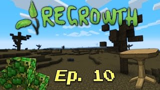 Regrowth Ep 10 - Házberendezés, Essence Berry Bush
