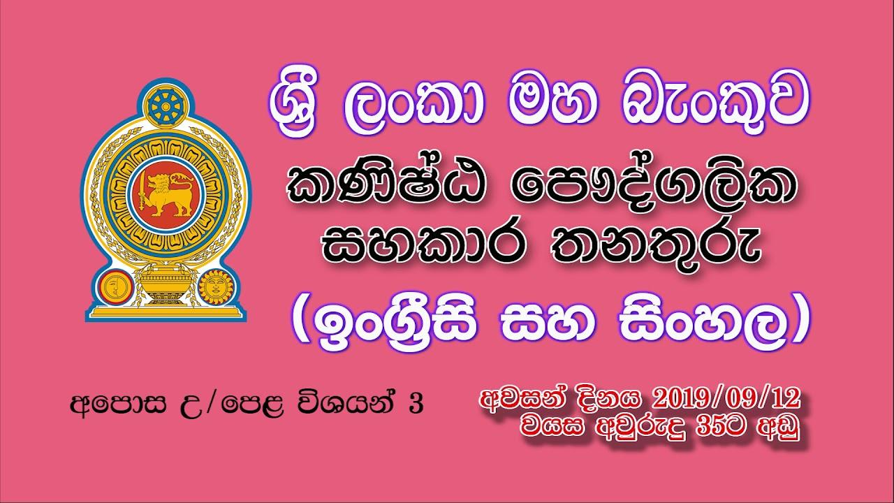 sri lankan government job vacancies 2019
