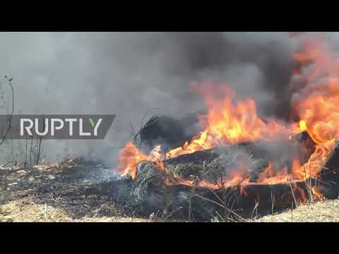 State of Palestine: Fatalities reported amid clashes on Gaza-Israel border
