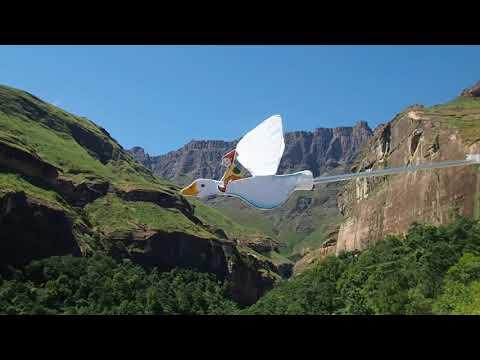 Nils Holgersson flies over the Drakensberg Amphitheatre