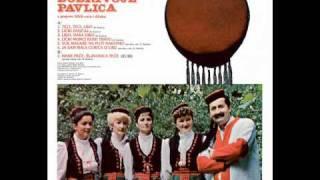 Dobrivoje Pavlica - Vuk magare na plot nagonio