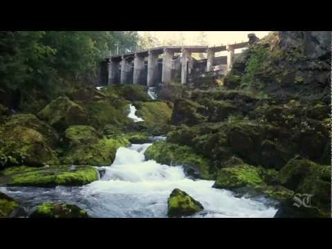 A Seattle Times special report: Removing the Elwha River dams
