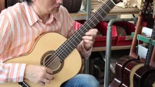 Hofner HM83 classical guitar demo