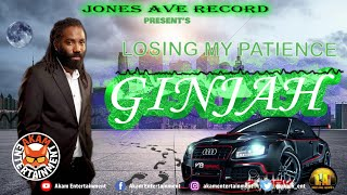 Ginjah - Losing My Patients [Audio Visualizer]