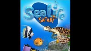 "Sealife Safari ""Coral Reef"" All Sea Shell Locations"