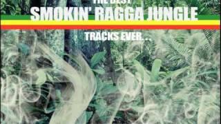Smokin Ragga Jungle Mix CD Preview