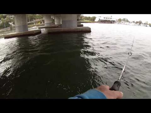 HOW TO CATCH HERRING FOR BAIT