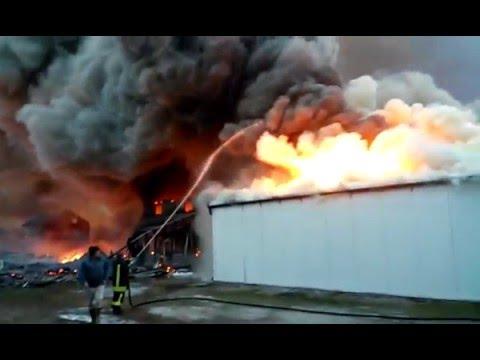 Arizona u požaru, gori najpoznatija tržnica 11.01.2016