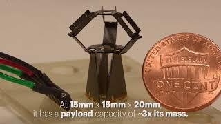 折り紙にインスパイアされたデルタロボット『ミリデルタ(milliDelta)』を米ハーバード大学が公表
