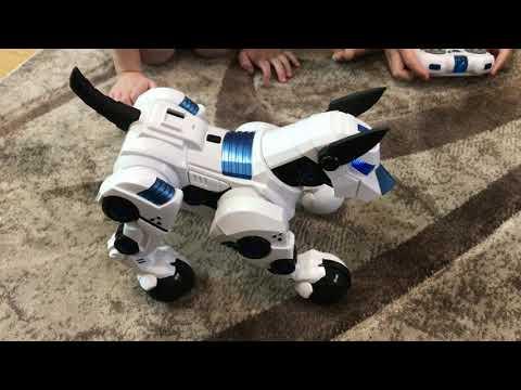 РОБОТ СОБАЧКА / ВЕСЕЛИМСЯ / ДОМАШНИЙ ПИТОМЕЦ /РАСПАКОВКА / РАДИОУПРАВЛЕНИЕ / the robot dog / pet