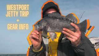 Westport Jetty Fishing 101 (includes gear info)