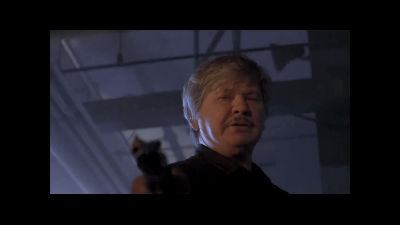 Download Death Wish 5: The Face of Death (1994) - Trailer (HD)