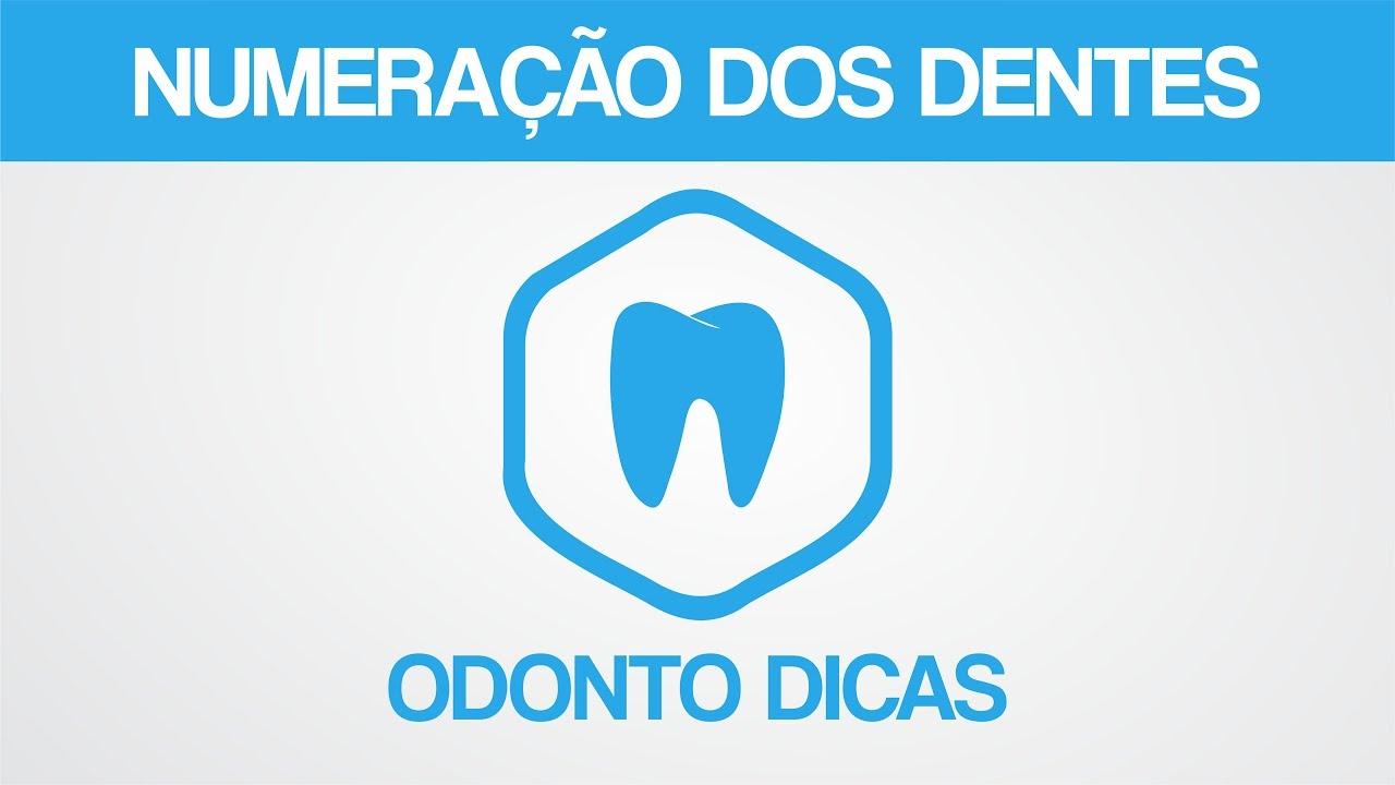 Top NUMERAÇÃO DOS DENTES | ODONTO DICAS - YouTube DM96