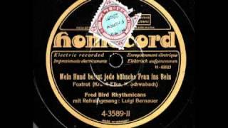 Mein Hund beisst jede hübsche Frau ins Bein / Fred Bird Rhythmicans, Gesang: Luigi Bernauer