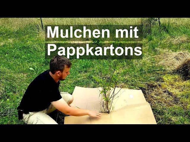 Mulchen mit Pappe - Unkraut mit Hilfe alter Pappkartons unterdrücken - Streuobstwiese und Waldgarten