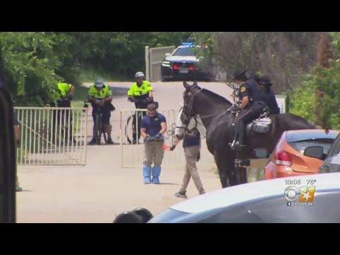 Investigation Underway After 4-Year-Old Boy Found Murdered In Street In Dallas