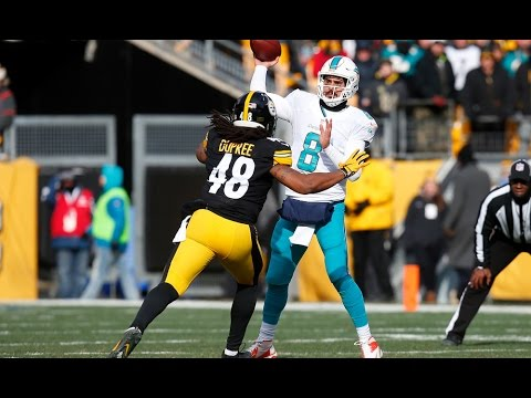 Steelers DESTROY the Dolphins || 2016 AFC Wildcard Highlights