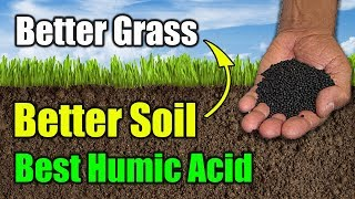 Best Humic Acid Product for Lawns