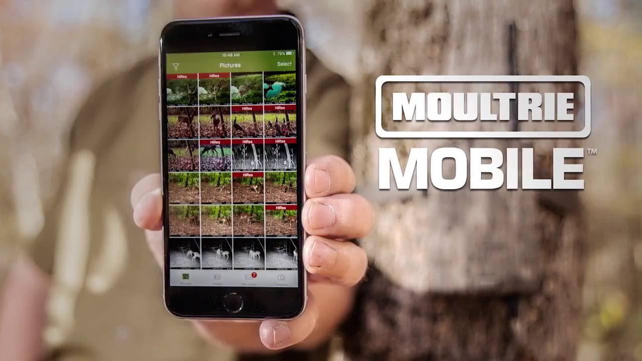 Moultrie Mobile Wireless Field Modem Mv1 >> Moultrie Mobile Wireless Field Modem Product Video Clean Youtube
