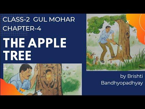 Class-2 Gul Mohar