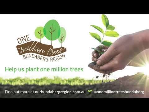 Help us plant one million trees