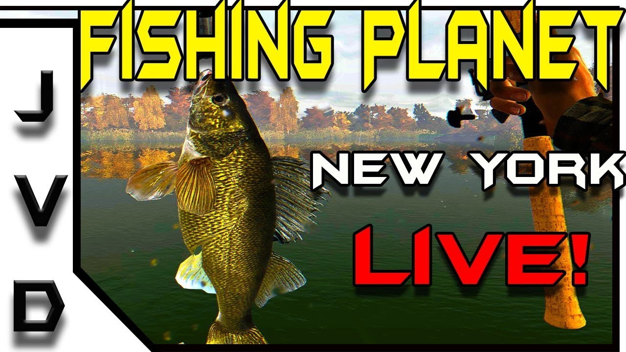 Fishing Planet LIVE! | Mid-Morning Fishing in New York on
