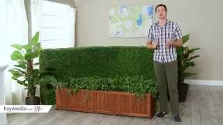 Coral Coast Rectangular Wood Aster Patio Planter Box - Product Review Video