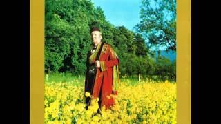 Himzo Polovina - Vino piju age Sarajlije - ( Audio )