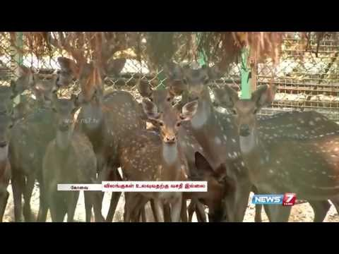 Animals in Coimbatore VOC Park Zoo suffer poor conditions & space shortage