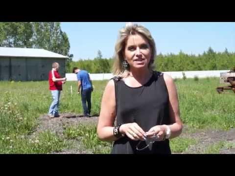 Промбаза в Новосибирске. Земельный участок со строениями.