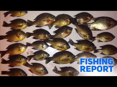Ice Fishing Tactics In Ludington, Michigan! - Fishing Report