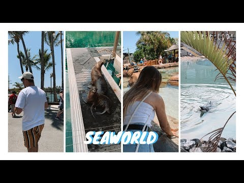 SEAWORLD Gold Coast - Vlog // Bek & Cody