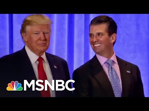 Robert Mueller Eyeing Trump's Response To Russia Meeting At Trump Tower | The 11th Hour | MSNBC