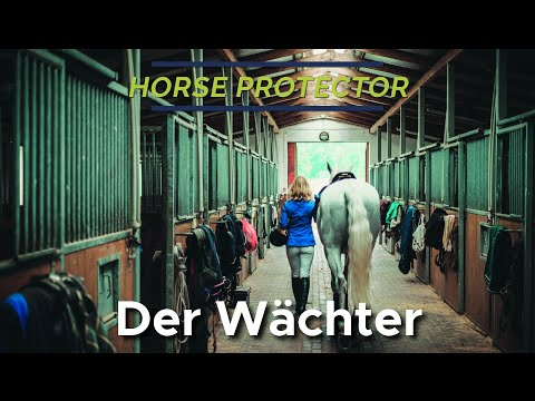 HORSE PROTECTOR Image Video