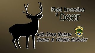 Gambar cover How to Field Dress a Deer