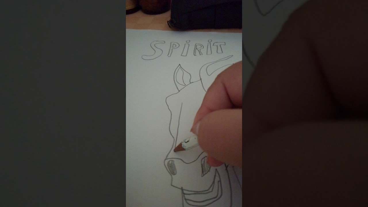Spirit cavallo selvaggio parte 2 Continua - YouTube
