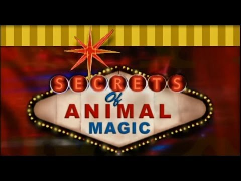 Secrets of Animal Magic Tricks