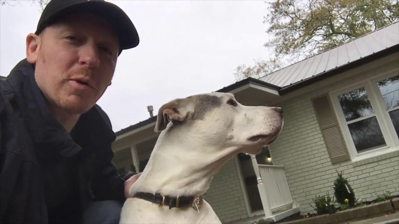 Foreclosure help Dawsonville