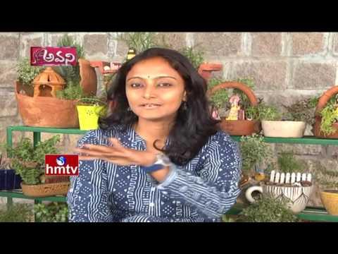 Inspirational Sisters Bhageshwari & Radhakrishna Devi   Miniature Gardening Avani - Evaro Okaru HMTV