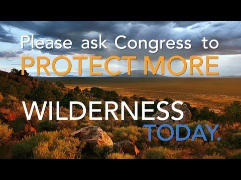America's Wilderness: Tell Congress to Protect More Today | Pew