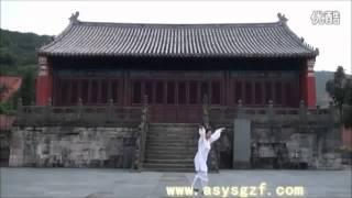 WUDANG DAOIST Five ( 5 ) Elements QIGONG by Li YuanFei ...........Part ( 4 ) Fire  .