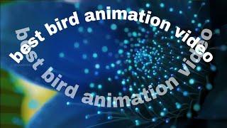 Best bird animation video